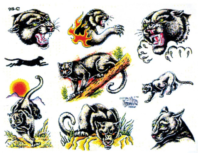 Значение и эскизы татуировки пантеры
